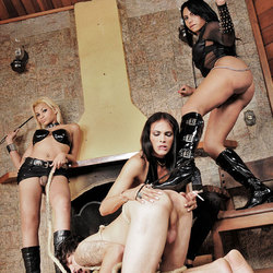 Shemale dommes destroy this submissive male