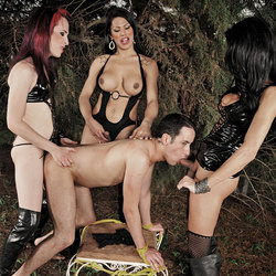 Three ts dommes take turns dominating