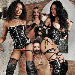 Trio of shemale dommes and a submissive