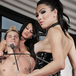 Submissive male punished by tranny dommes