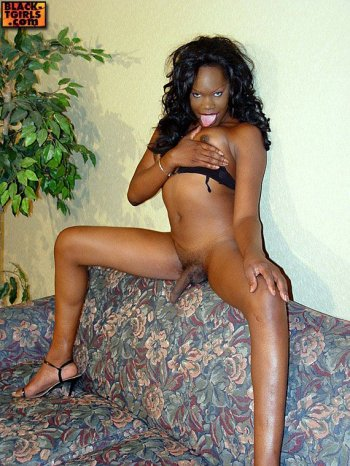 african transexual